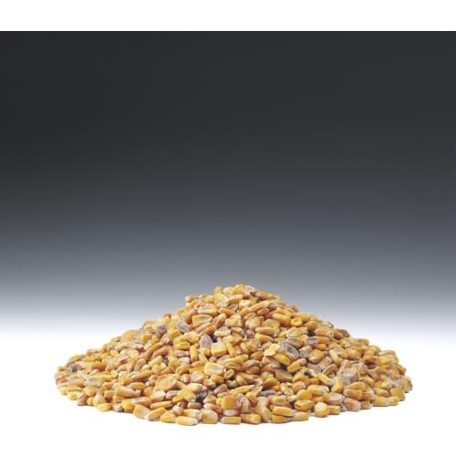 Fodermajs BB (750) EU Non GMO