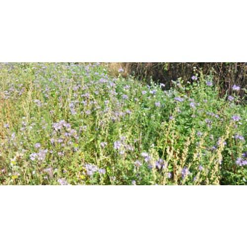 Pollen og Nektar blanding 2 kg