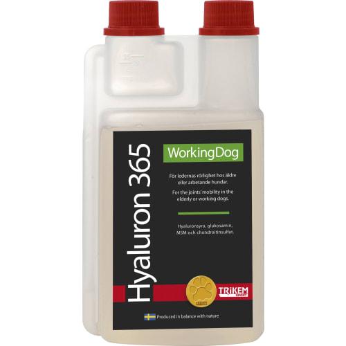 Hyaluron 365 1000 ml